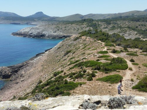 Way from Tower d'Aubarca to Cala Mitjana