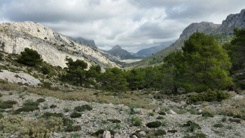 View back to Cuber from Coll de L'Ofre